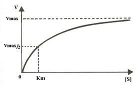 tabel indice viteza