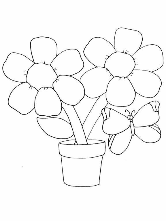 Цветы раскраски раскраска цветы