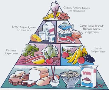 piramida alimentelor imagini